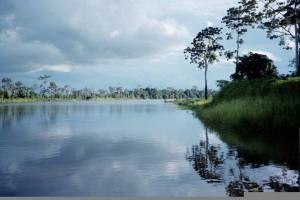 Turismo para a selva Tours: Daydream Iquitos 4Dias/3Noites. Os melhores pacotes turísticos no Peru e na América do Sul.