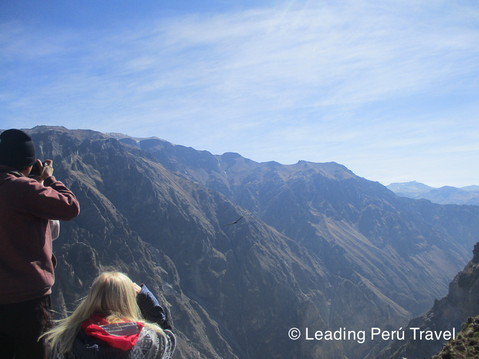 Tours in Peru 1 to 30 Days Tours: Tour Peru 15 days: Machu Picchu, Titicaca Lake, Colca Canyon, Amazon. The best tourist packages in Peru and South America.