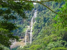 San Martin Tours: Half Day – Catarata de Ahuashiyacu. The best tourist packages in Peru and South America.