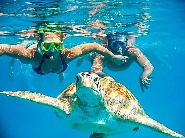 Piura Tours: North Beaches Tour + Swim with Turtles + 2-star Hostel 3d / 2n. The best tourist packages in Peru and South America.